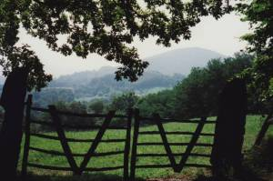 gate with mountain in the distance